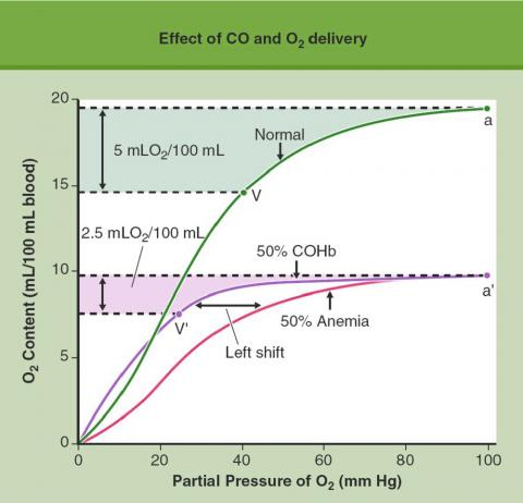 Effect of CO and O2 delivery