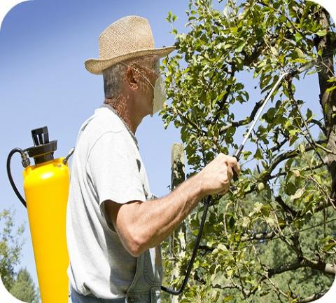 """In de woning, in de tuin, in de landbouw, overal worden we geconfronteerd met producten om """"ongedierte"""" te bestrijden. """"Pesticiden"""" is de verzamelnaam van deze chemische producten."""