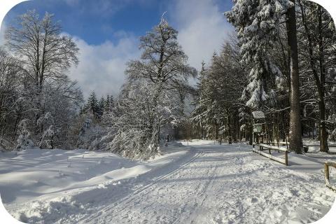 Veilig de winter door