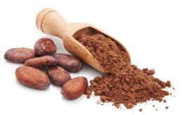Honden zijn gevoelig voor theobromine in cacao.
