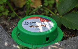 De concentratie van het insecticide is gewoonlijk zeer laag zodat de totale hoeveelheid per doosje erg klein is.