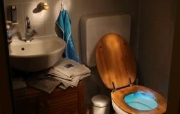 """Er bestaan twee grote categorieën van toiletreinigers: producten op basis van een zuur en producten """"met javel""""."""